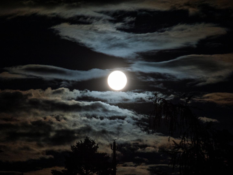 Schöne Stimmung mit Mond Teil 2