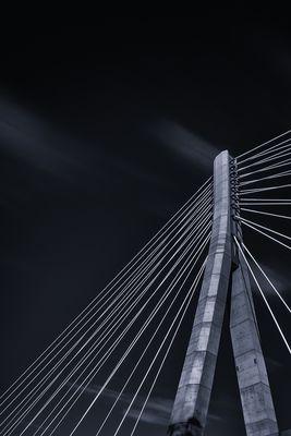 Schönebecker Elbauenbrücke -2-