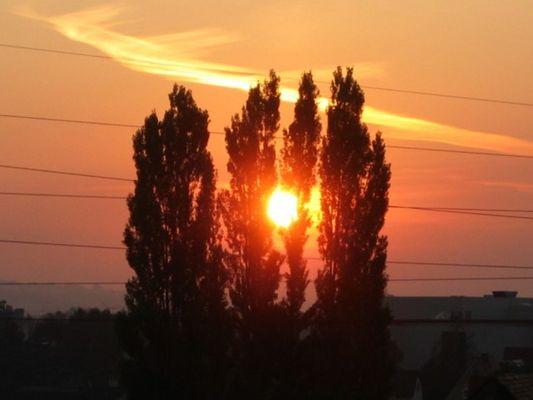schönen guten Morgen