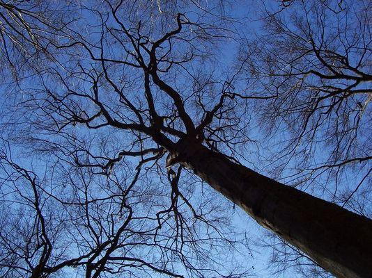 schöner blauer Himmel ;-)