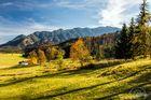 Schöner Herbstnachmittag