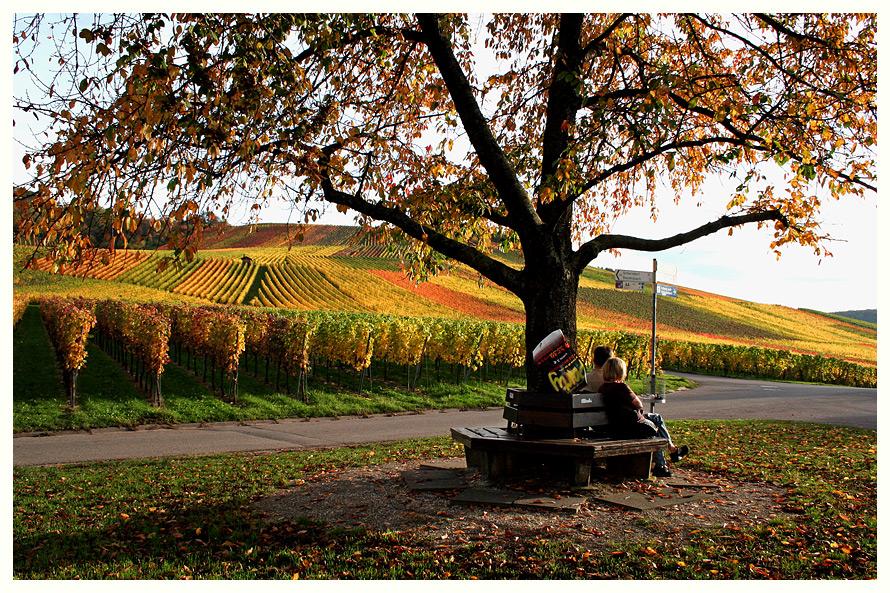 Schöner Herbsttag ...