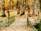 .....schöner Herbsttag