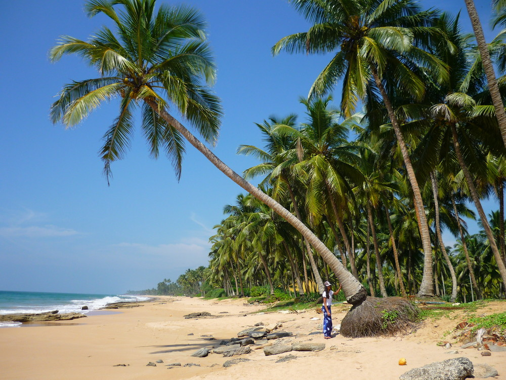 Schöner Strand Sri Lanka