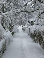 Schöner Winter 2006