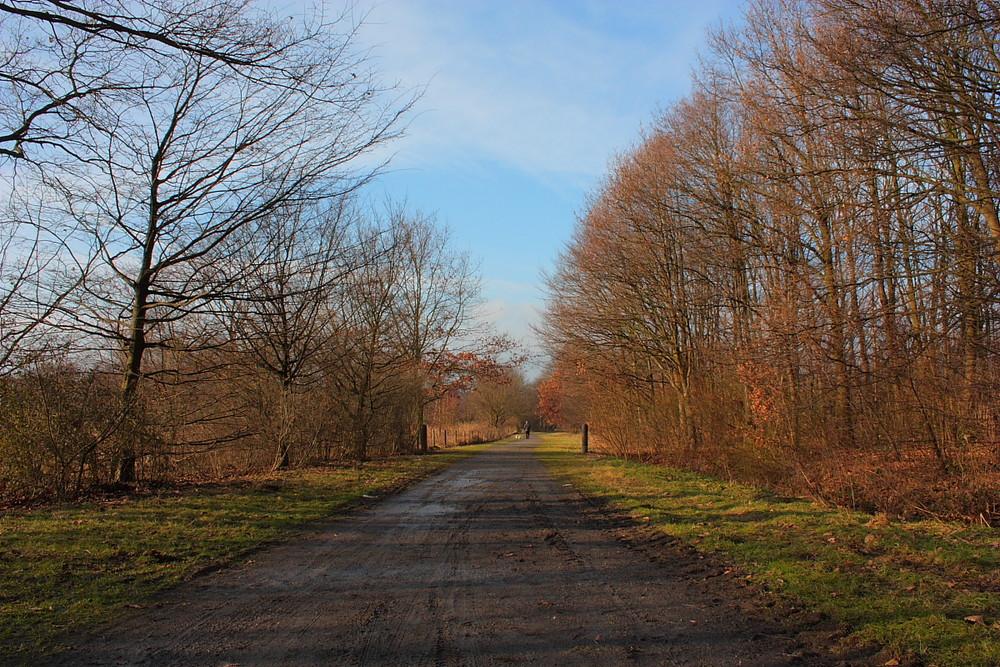 Schöner Wintertag..