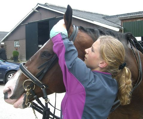 Schönes Pferd, schönes Mädchen, 2007