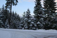 Schönes Winterliches Flair