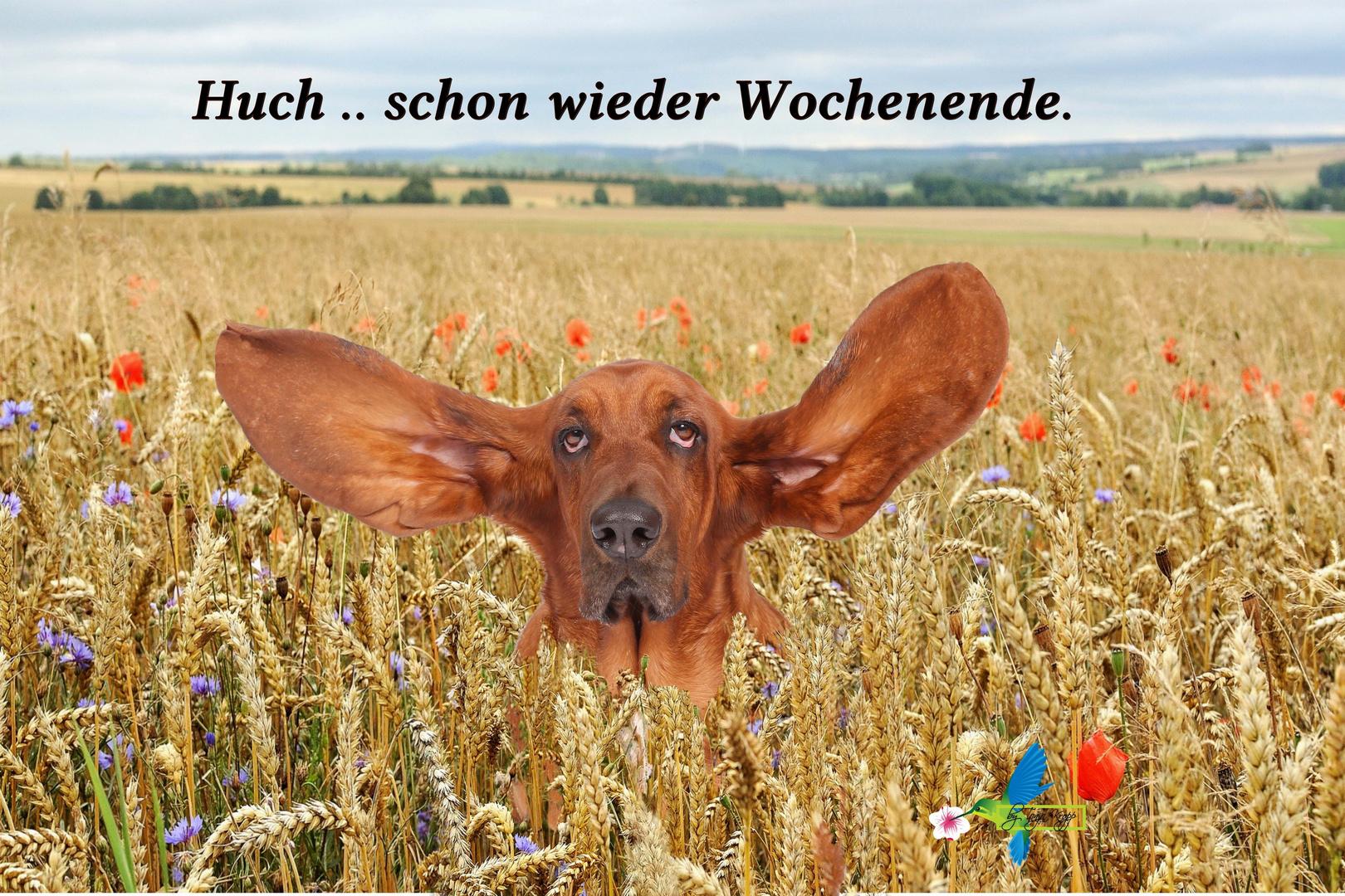 """.. """"Schönes Wochenende"""" .."""