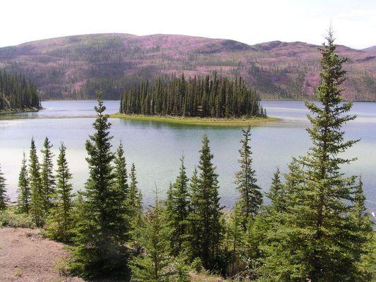 Schönes Yukon