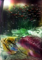 Schönheit der Unterwasserwelt