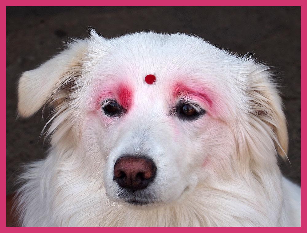 """""""Schönheit"""" in Nepal"""