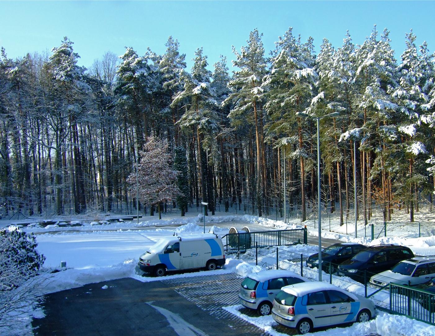 °°° Schönstes Winterwetter - Wenn nicht Frühling wäre °°°