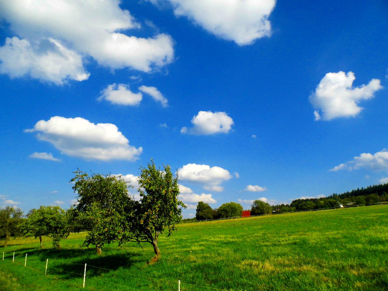 Schönwetter Wolken