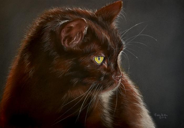 Schoko-Katze