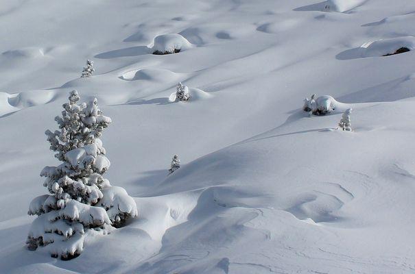 Schonheit des Winters