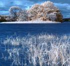 schottisches Blau