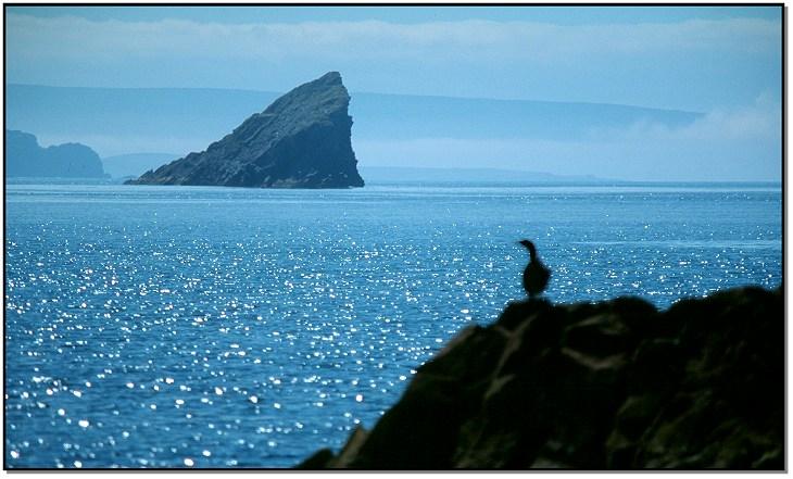 Schottland - bei den Summer Isles