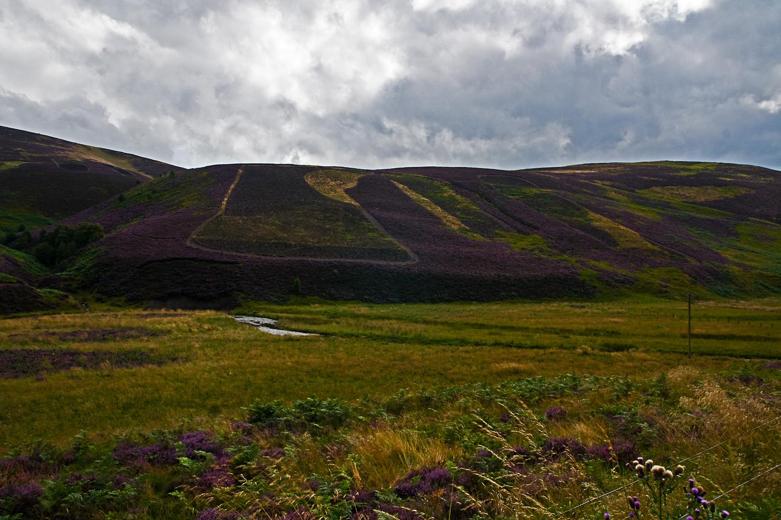 Schottland CXXVI - Moorfoot Hills