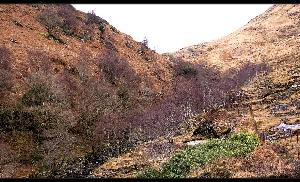 Schottland - eine Winterreise (57)