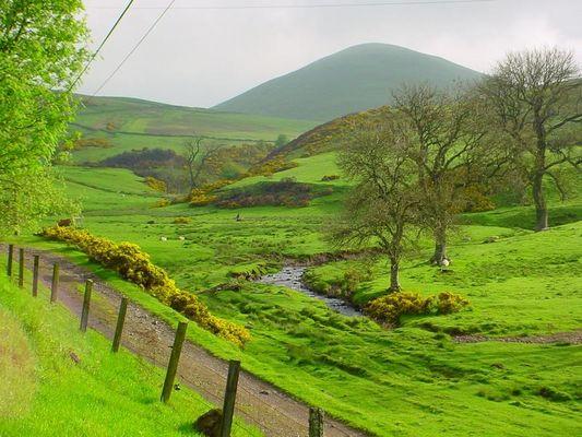 Schottland im Frühling