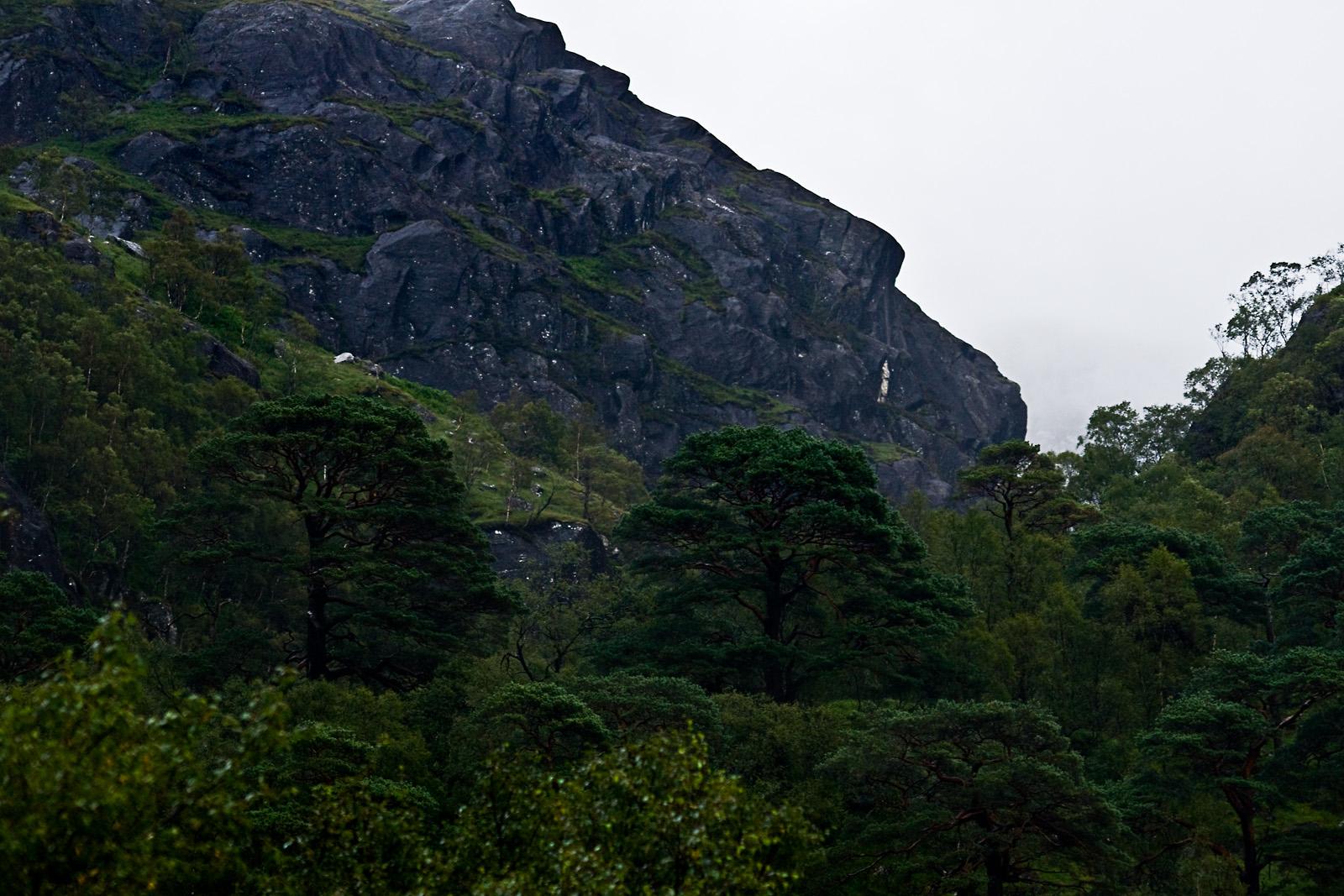 Schottland LV - Glen Nevis