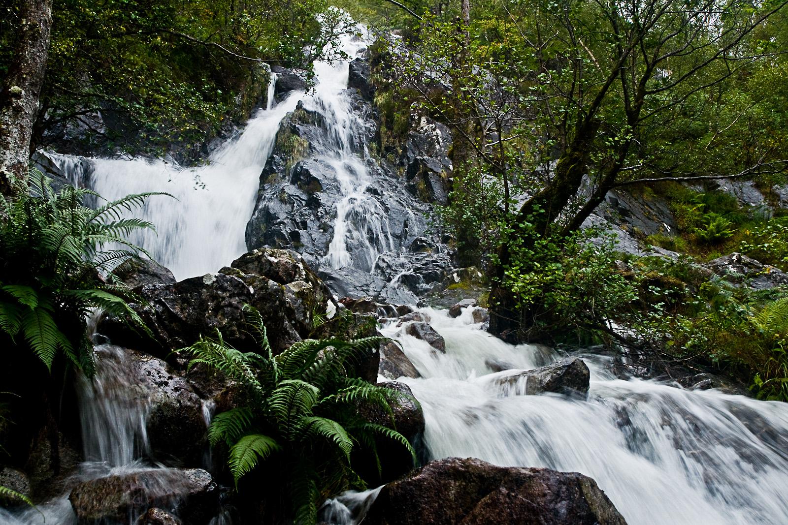 Schottland LVII - Glen Nevis