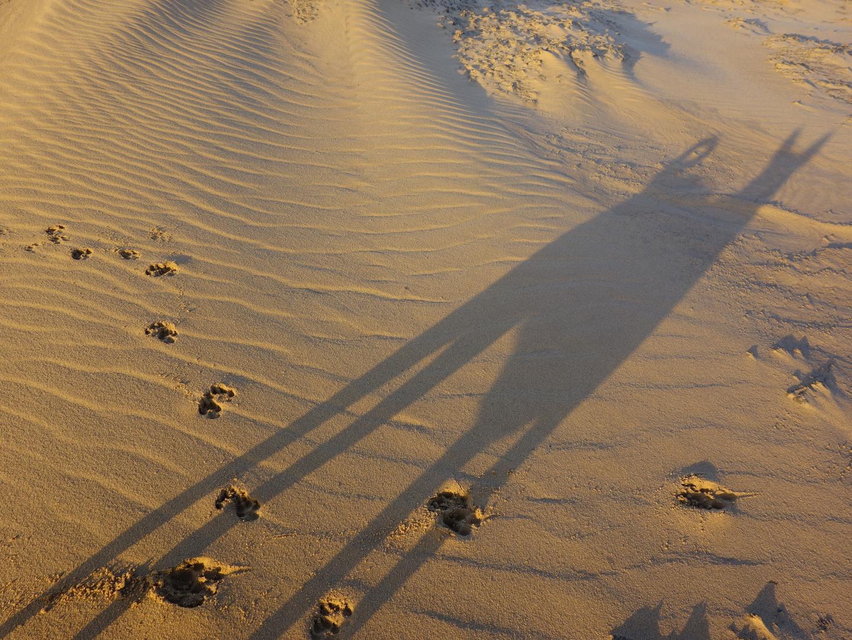 Schraege Sonne,lange Schatten