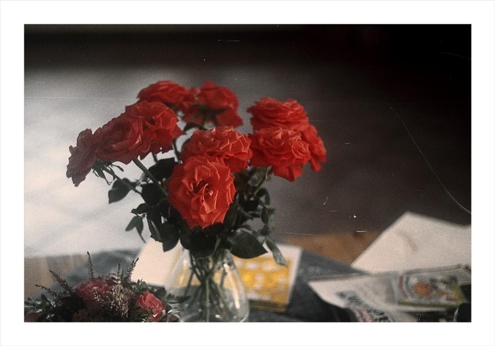 Schraub|Rosen|Leica