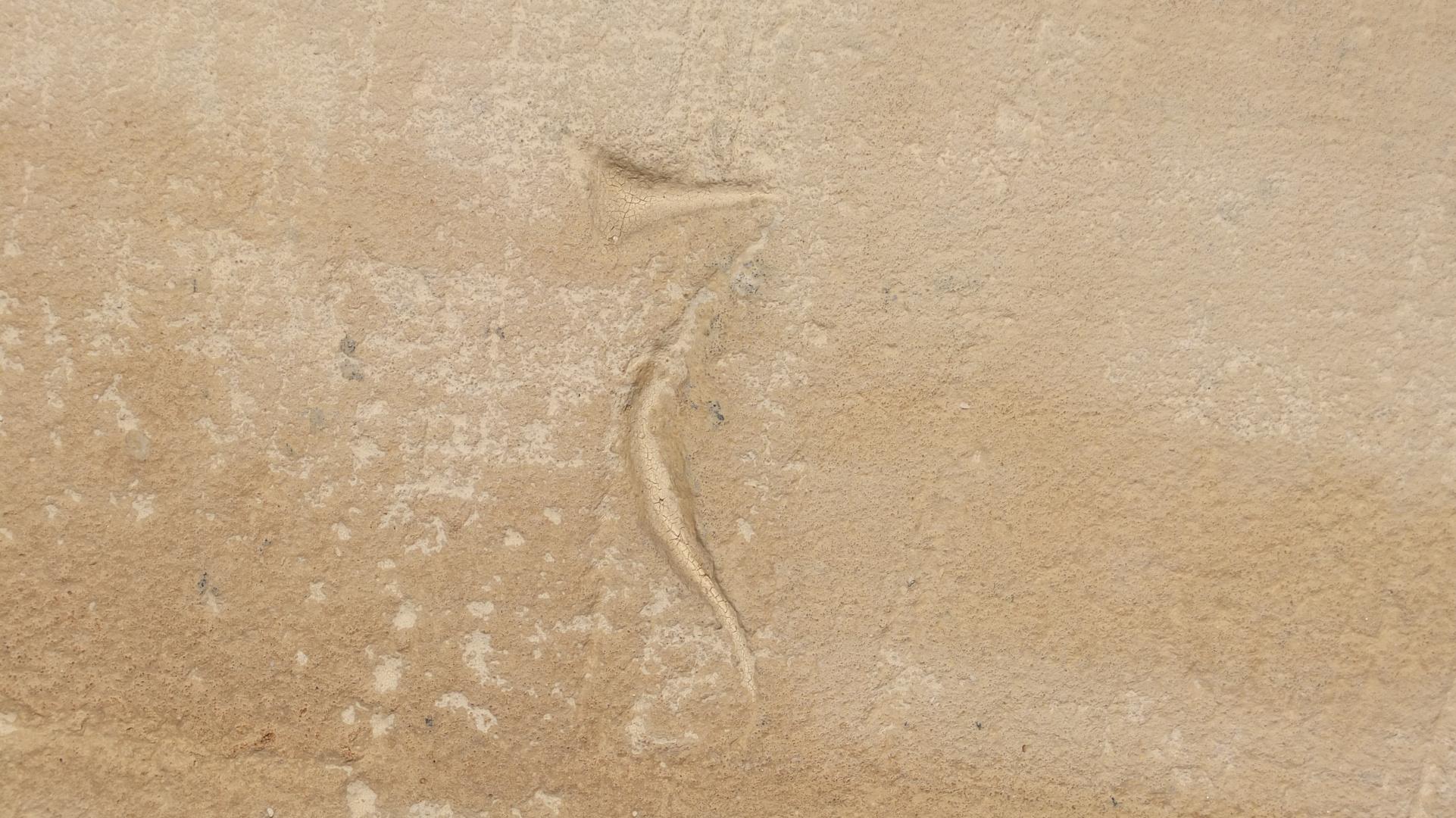 Schriftzeichen im Kreuzgang der ehemaligen Klosterkirche in Himmelkron