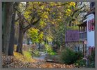 Schrobenhausen im Herbst