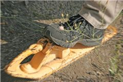 Schuh-Bremsschuh