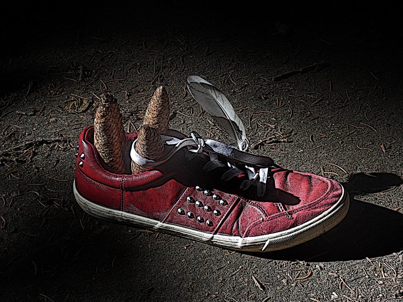 Schuh im Wald