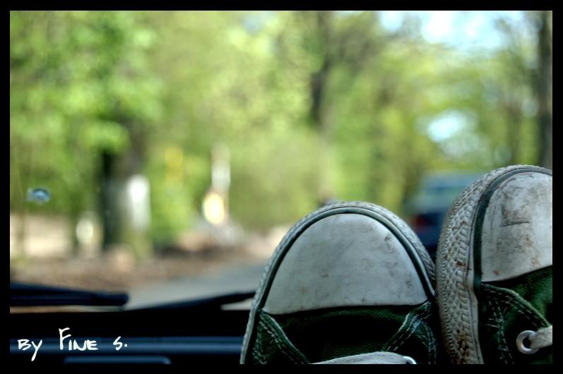 Schuh-Reise