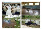 ...Schule in Tunguu Zanzibar...