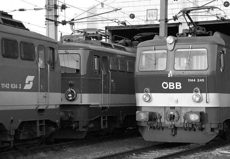 Schuppengleis 861