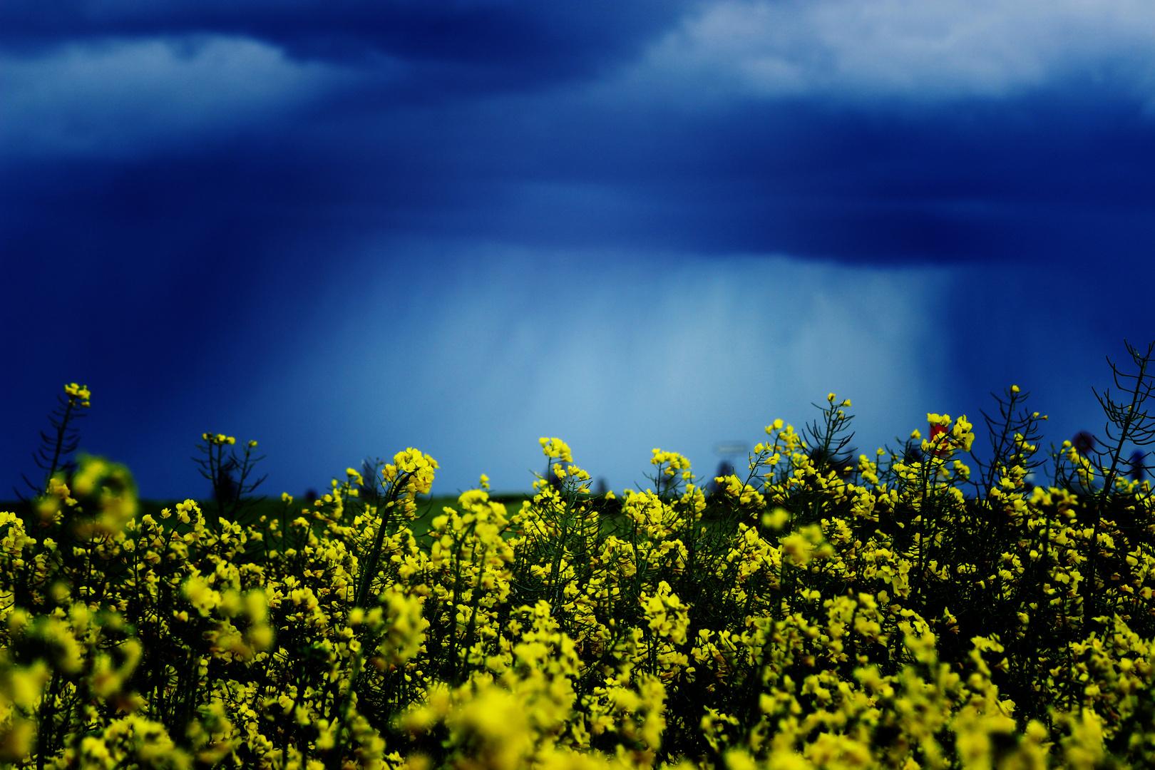 Schwäbische Landschaft mit Landregen