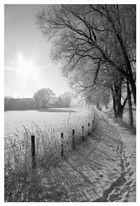 Schwarz- (ganz viel) Weiß - Foto