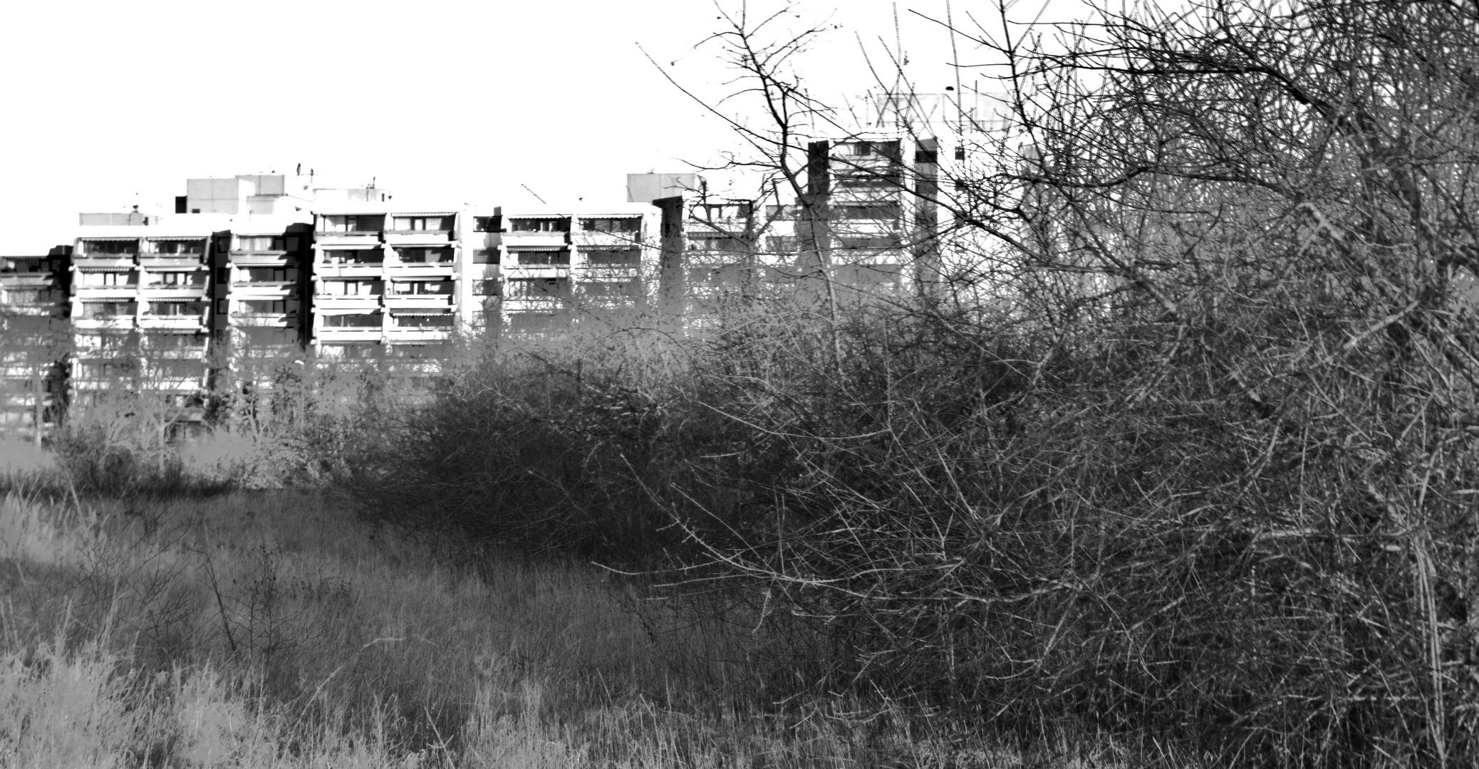schwarz-weiß Hochhäuser