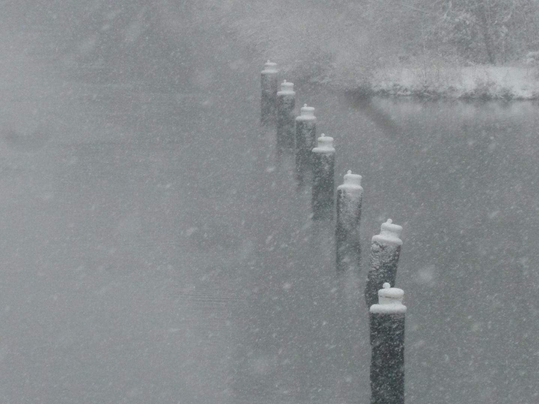 Schwarz-weiß Winter