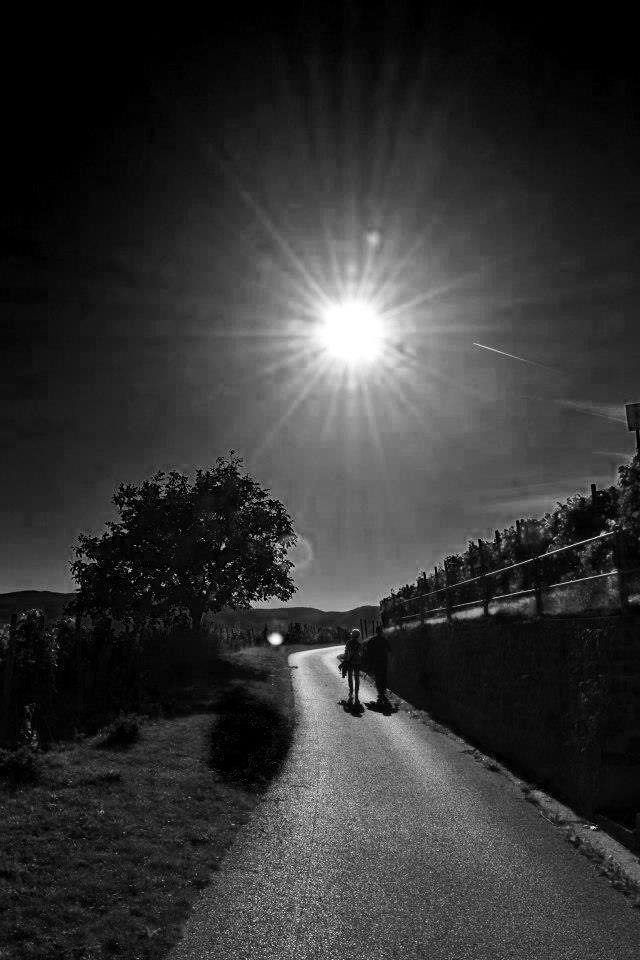 Schwarz-weißer Sommertag
