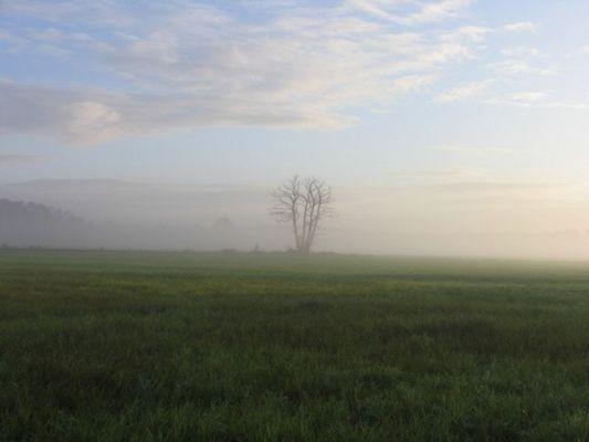 Schwarzbachwiesen im Herbst 10.2004