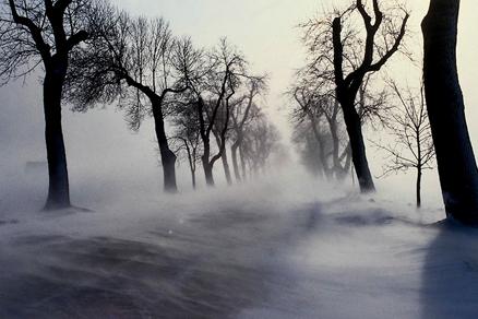 schwarze Giganten im Nebel
