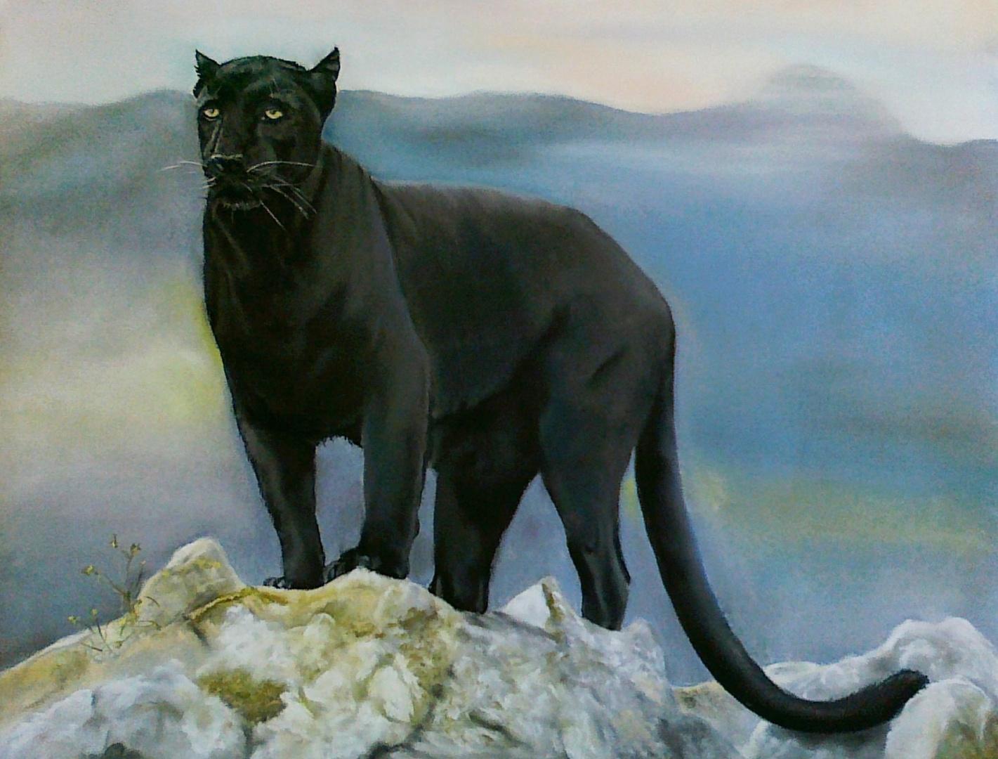 schwarzer Panther - endlich fertig