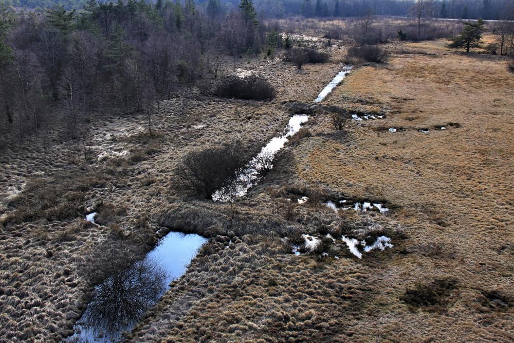 Schwarzes Moor (1)