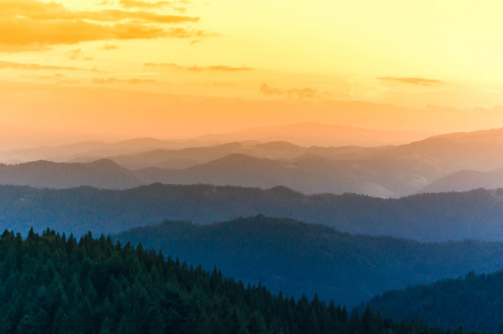 Schwarzwälder Aussichten
