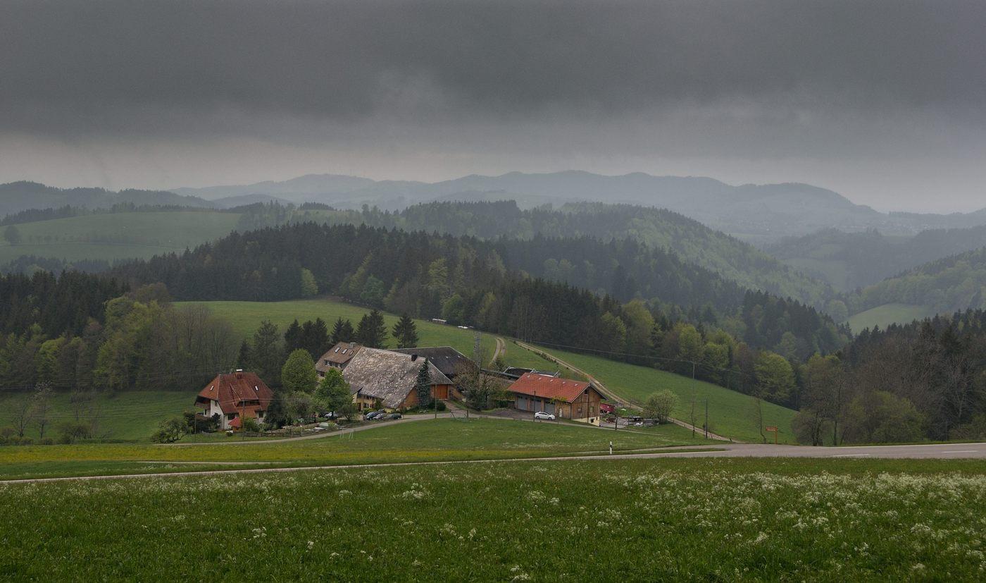 Schwarzwald. Das graue Wetter