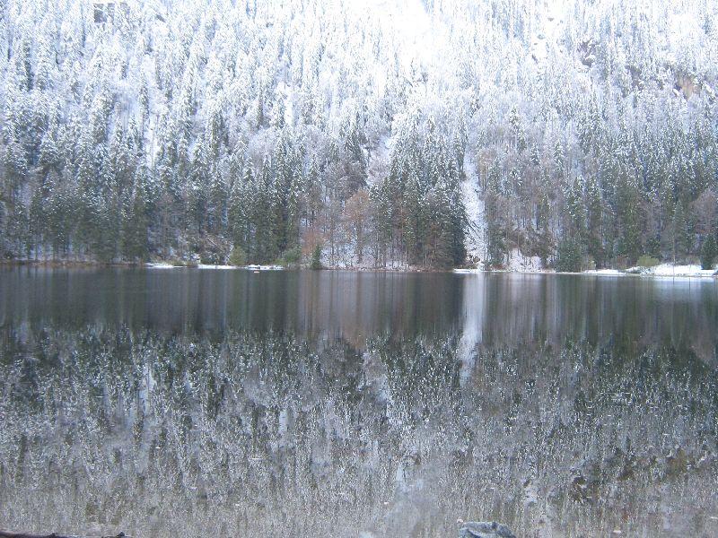Schwarzwald - Grafenhausen