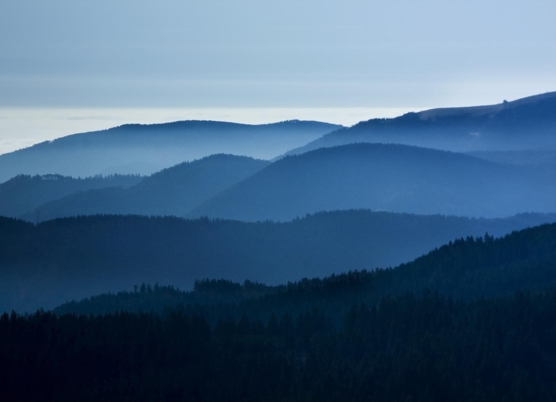 Schwarzwald heute blau
