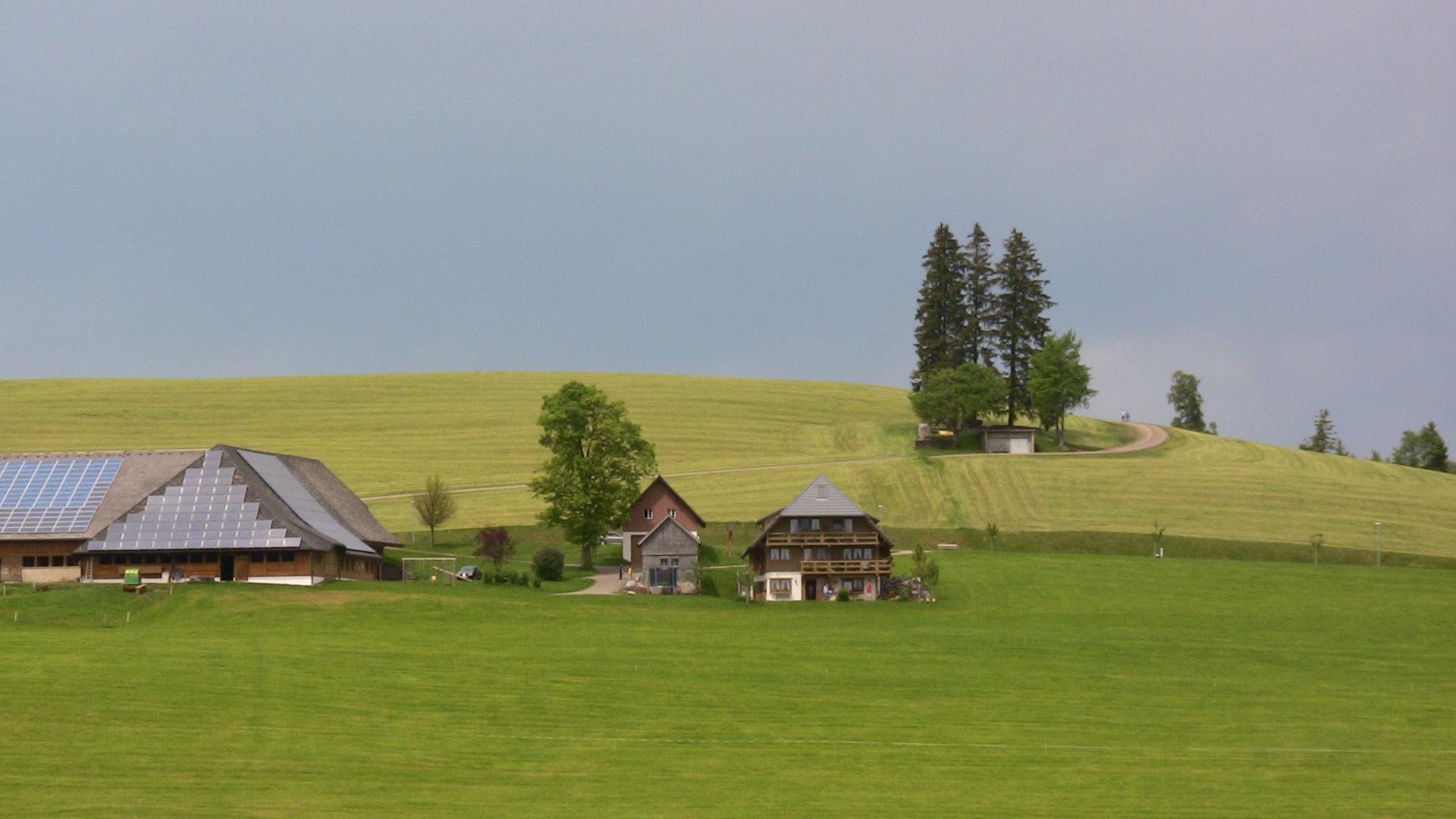 Schwarzwald-Idyll (Teil 2)